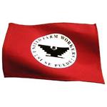 Display Flag