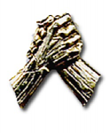 Pin, Unity Handclasp