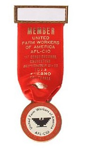 Badge, Delegate, 1973 Convention, Ribbon & Medallion